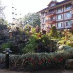 The Manor, garden