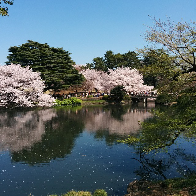 How to get Japan visa for Philippines passport